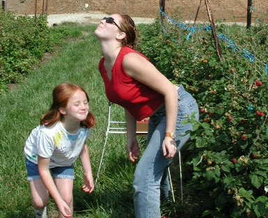 Two Raspberry pickers having fun